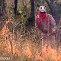 Manejo de fogo é a chave para combater incêndios no Pantanal