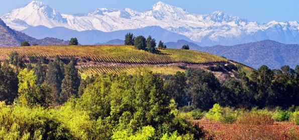 Dicas para uma viagem a dois no Valle do Colchagua