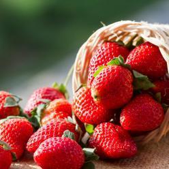 Fique saudável neste inverno! Veja os alimentos que ajudam a prevenir doenças!