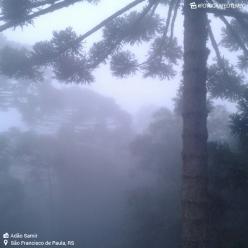 Véspera de feriado com nevoeiro no centro-sul do Brasil
