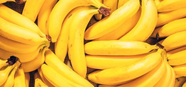 Saiba quais são as melhores frutas para consumir em setembro no Sudeste