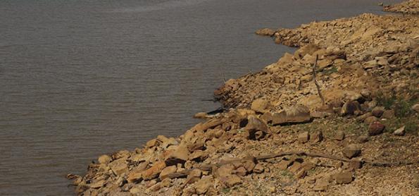 Crises hídricas mostram a importância da manutenção do bioma