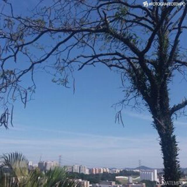 SP_São-Paulo-por-Camila-Hildebrando-12-10-16-sol-forte