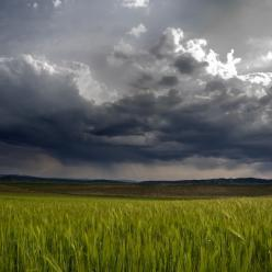 Convergência de nuvens e de chuva mudam