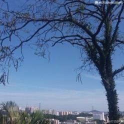 Ar mais seco em Mato Grosso do Sul