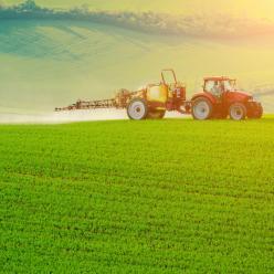 Chuvas irregulares preocupam produtores no RS