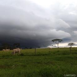 Chuva no Sul do Brasil ainda preocupa nos próximos dias
