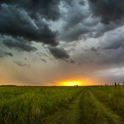 Chuva retorna e eleva umidade do solo no RS