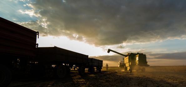 Chuva prejudica colheita em regiões do PR, MT e BA