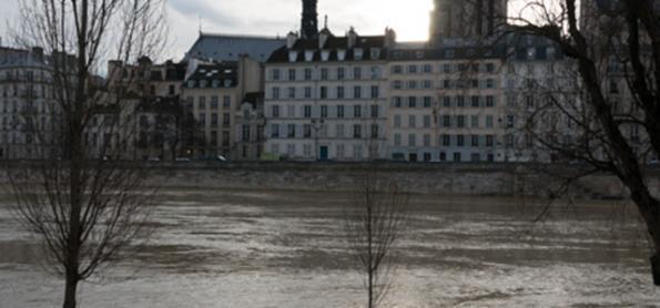 França tem janeiro mais ameno em 117 anos