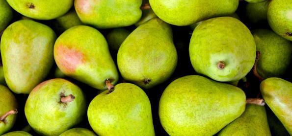 Frutas de clima frio se adaptam a temperaturas do sertão de PE