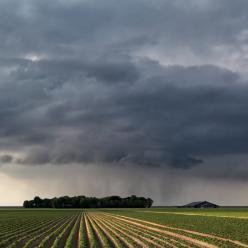 Após período de estiagem, chuva retorna à Argentina