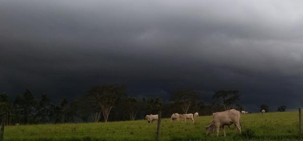 Aumento da chuva na Região Sul
