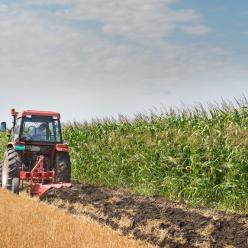 Cana pode ter paralisações momentâneas nas colheitas