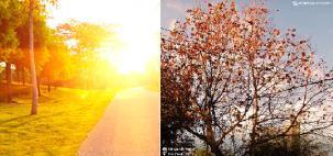 Verão termina e o outono começa nesta semana