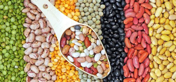 Brasil deve colher 226 milhões de toneladas de grãos