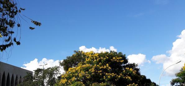 Calor e pancadas de chuva no Sul do Brasil