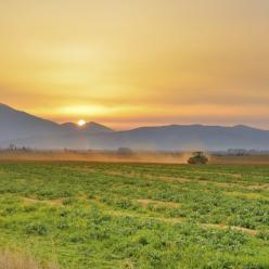 Irrigação inteligente eleva o potencial produtivo das lavouras