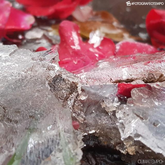 SC_São-Joaquim-por--_Mycchel-Hudsonn-Legnaghi--São-Joaquim-Online_19-6-18-congelamento-(3)