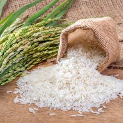 Grão de arroz modificado tem mais ganhos a saúde