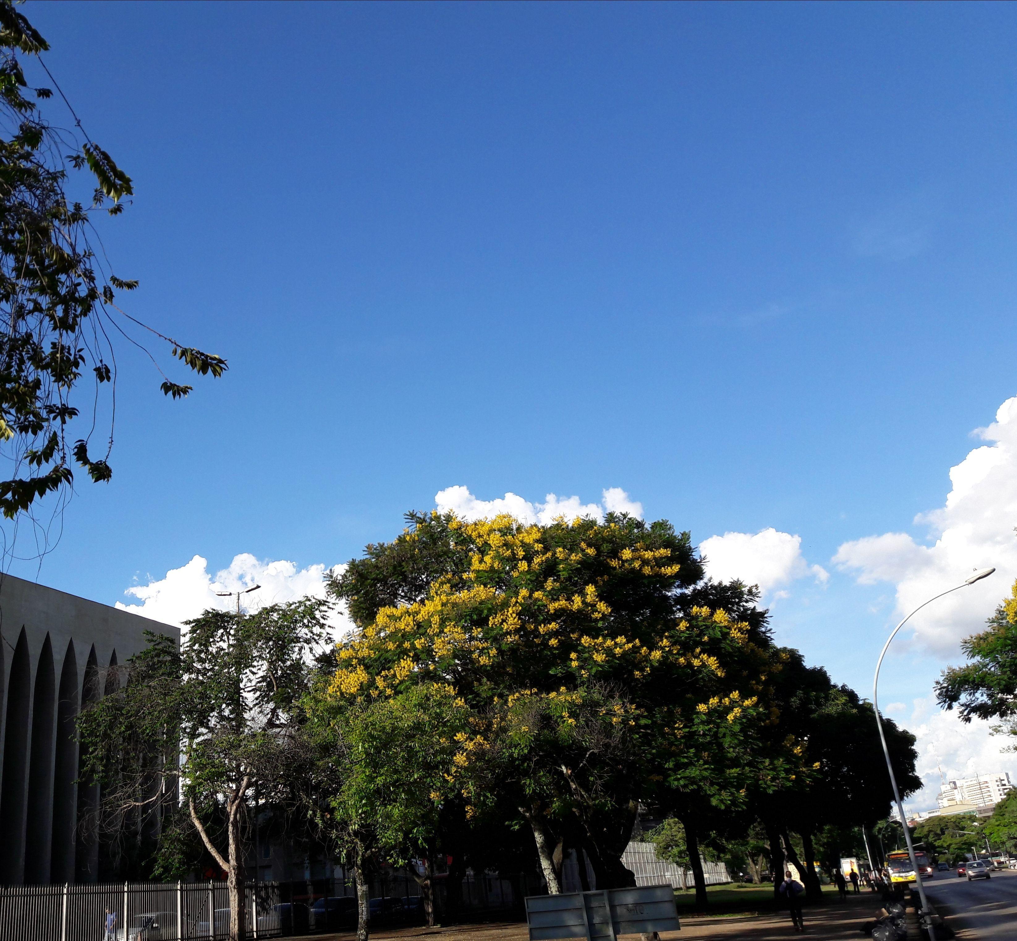 DF_Brasília por Wilan Nascimento 9-1-18 sol e calor