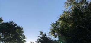 Qualidade do ar ruim na Grande São Paulo