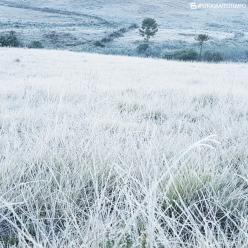Muito frio, geada e ressaca no Sul