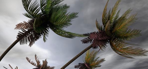 Ventania passa dos 100 km/h no Sul do Brasil