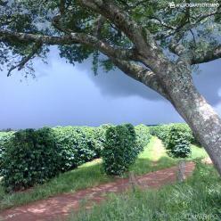 Chuva finalmente dá uma trégua ao centro-sul do RS