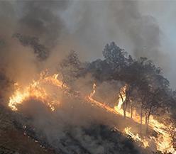 Mais de 200 desaparecidos no pior incêndio florestal da história da Califórnia