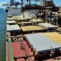 Movimentação de grãos em Paranaguá supera volume de 2017