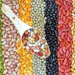 Conab divulga 3° levantamento da safra de grãos