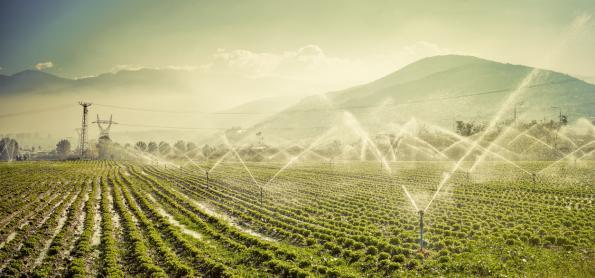 A expansão da cultura irrigada em 2018