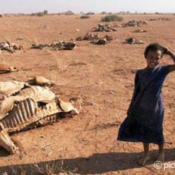 As catástrofes humanitárias esquecidas do planeta