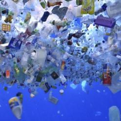 Uma pessoa ingere 120 mil partículas de microplástico ao ano
