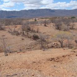 Ceará: 11,45% do território em processo de desertificação