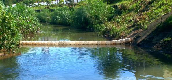 Ecobarreira: invenção fácil e barata pode ajudar a despoluir rios