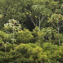 Governança dos recursos hídricos na Amazônia