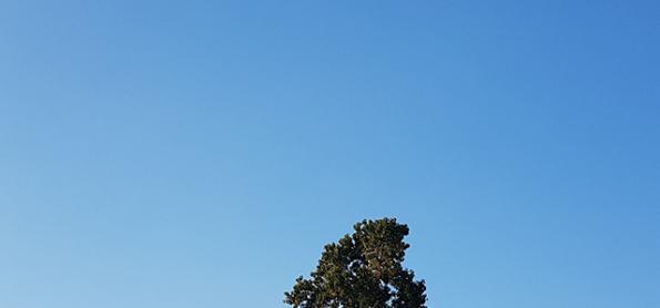 Sábado será de sol forte e muito calor no Sudeste