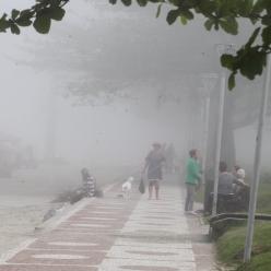 Nevoeiro marítimo em Santos