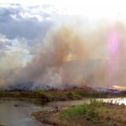 Carbono negro encontrado no Rio Amazonas revela queimadas