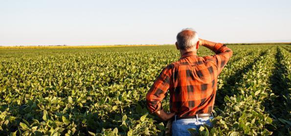 Produtor irá receber recursos para cobrir perdas com a seca