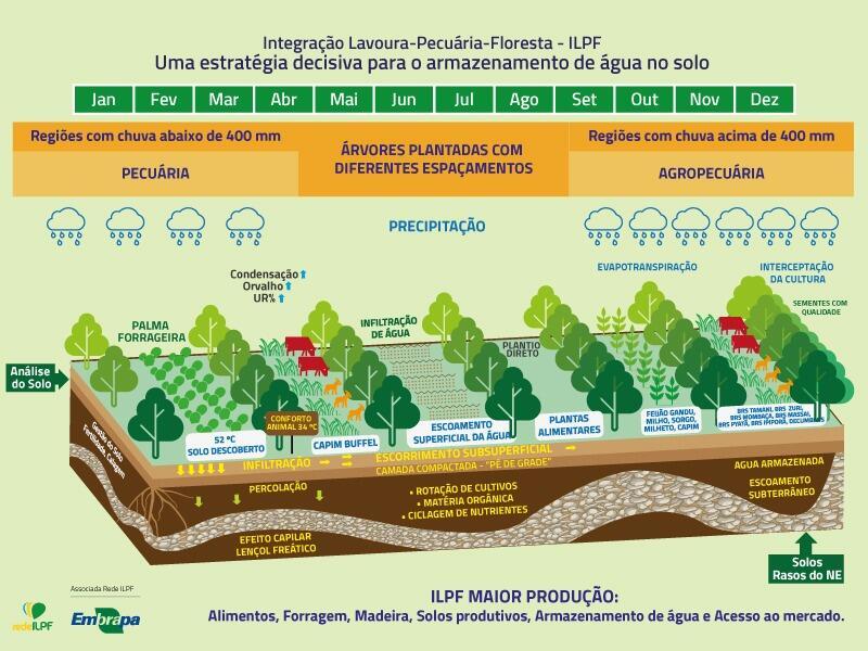 Gráfico sobre ILPF no Semiárido.