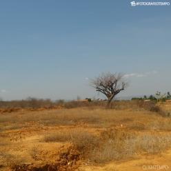 Ar muito seco e calor intenso no Nordeste