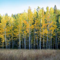 Sol e ar seco predomina no Nordeste
