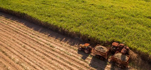 Produtividade da agropecuária cresce 3,36% ao ano