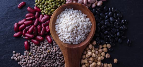 Safra de grãos 2019/2020 indica produção de 245,8 milhões/t