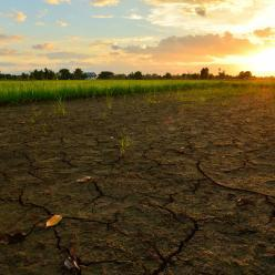 Unesp e Austrália irão pesquisar impactos da mudança climática