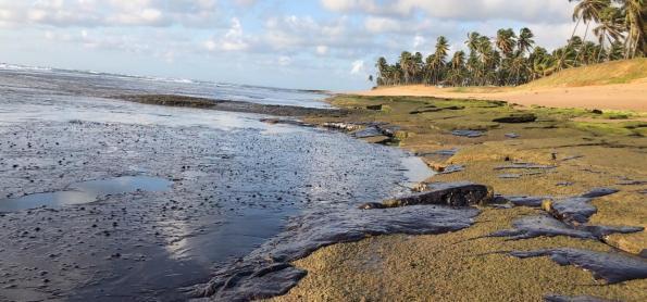 Novos resultados de análise de óleo do Nordeste