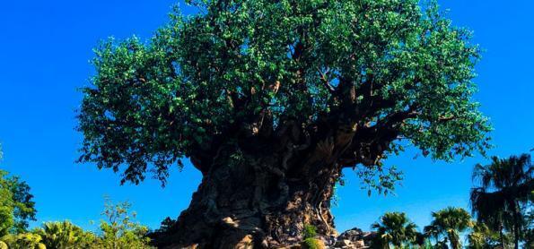 10 atrações para crianças no Disney's Animal Kingdom Theme Park